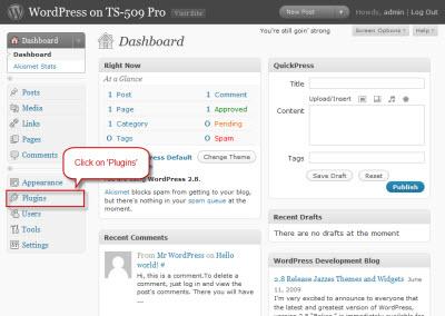 FAQ-wordpress-nextgen-s01